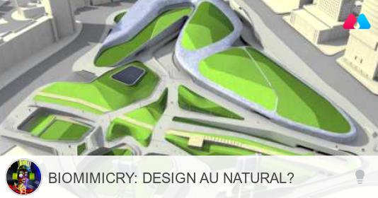 Biomimicry and Landscape Architecture Milq Playlist